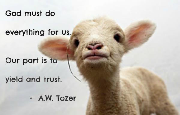 our-part-yeild-and-trust-tozer